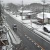 強烈ななごり雪