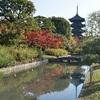 東寺の五重塔。特別拝観で内部見学可能。