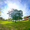 超広角レンズがいい感じ。238°の世界が面白い。iPhoneカメラとカメラレンズで遊ぶ(ワイド撮影・セルフィー)