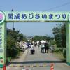 開成町のあじさい祭り【2017年】日程や詳細、みどころについて