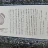 万葉歌碑を訪ねて(その498)―奈良市神功4丁目 万葉の小径(34)―万葉集 巻十 二一八九