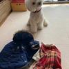 ~kotaroの洋服コレクション~