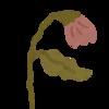 5-360   枯れっぱなしの花   ✳︎2017.3.30の記事より