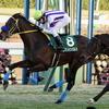 2018年京成杯 GⅢ -前走1800~2000m戦で上がり2位以内の馬が好成績-