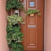 玄関の模様替え…1
