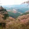 吉野山お花見トレッキング・オンラインツアー!