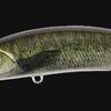 【DUO】多彩な釣りを演出するシャッド「レアリス ロザンテ」に新色追加!