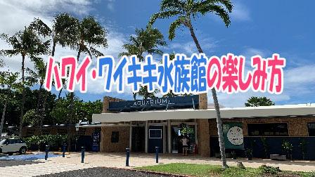 ハワイ・ワイキキ水族館の楽しみ方
