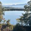 西宝入池(和歌山県紀の川)