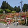 赤と緑の交わる町 春の七戸