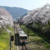 御殿場線の山北駅では満開の桜とカフェランチを楽しめる
