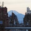 1月中旬:駒沢オリンピック公園周辺をお写んぽ