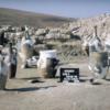 五大陸考古学講座「ヒッタイト帝国の都市遺跡を掘る」2月16日開催!