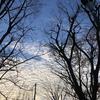 アラ還、空を見上げる。人生をちょっとだけ考える。