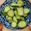 夏休みは子供も料理に参加を! 知れば食べたい夏野菜「キュウリ」編