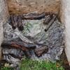 大鋸屑堆肥の切り返し 食べて仕事して Turning over the sawdust compost