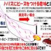 沼津湾内春マダイ良型連発in舵丸の巻!!
