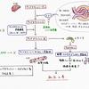 ミネブロ錠〜選択的ミネラルコルチコイド受容体拮抗薬 セララとの違いは?