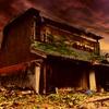 【都市伝説】中国で起きた夜狸猫事件 村人1000人が一夜で消え去った?真相を追う