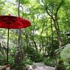 【鎌倉いいね】あまり知られてないけどオススメ「一条恵観山荘」