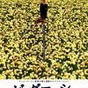 VOL2.137 「ビッグ・フィッシュ」(2003年)映画で泣かない僕が、何度観ても泣きそうになる映画。