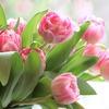 イギリスでは3月31日がMother's Day