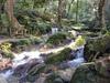 夏旅Vol.12 近江八幡から小浜へ~瓜割の滝