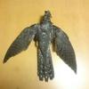 バードストライクの鳥