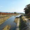 秋の京都散策記④ 今回の旅行で参拝した寺社(二日目)