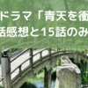 大河ドラマ「青天を衝け」第14話感想と15話のみどころ【大河ドラマ2021】