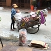 カンボジアの資源物回収、空き缶、段ボール等。
