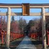 「朝日森神社 -栃木県-」 梅の咲く時期、甘い香りの天満宮に参拝しませんか?