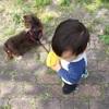 久しぶりの犬散歩