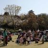 桜満開の浜松城公園で第37回アース・エコ・フェア