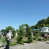 松山大学薬学部附属薬用植物園の「春季一般公開」
