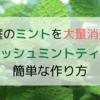 【お庭のミントを大量消費!】フレッシュミントティーの簡単な作り方&嬉しい効果とは?
