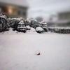 ひょうたんライトと雪景色