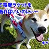 真夏の雪まつり NDA 桧枝岐村大会3 (温泉&お料理)