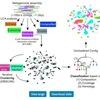 machine leraningも併用するmetagenomeのビニングツール Autometa