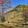 【奥秩父】笠取山、分水領を眺め奥秩父縦走路を歩き紅葉を愛でる奥秩父の旅