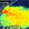 放射能による深刻な海洋汚染状況と魚介類の危険性