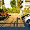 【つれづれ】20171209 冬の陽だまり
