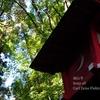 【Sony α9 / オールドレンズ】油山寺に紅葉を撮りに行って来ました