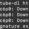 python3 環境で youtube-dl を update する(sudo pip3 install -U youtube-dl)