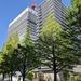 仙台中心部のタワーマンション、プラウドタワー仙台晩翠通の建設状況(2021年5月)