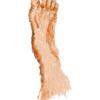 のzの…今日の足とブエルタと暗黙の了解と