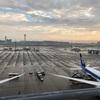 JAL上級会員への道⑱ 今回は乗り遅れずに済みました。 JAL201 羽田→中部 搭乗記