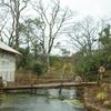 Tokiwa zoo
