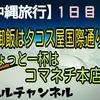 【沖縄旅行】1日目!晩御飯はタコス屋国際通り店!ちょいと一杯はコマネチ本店!