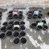 天候不順で花壇作りが出来ず。仕方なく、種まきコップにしました。